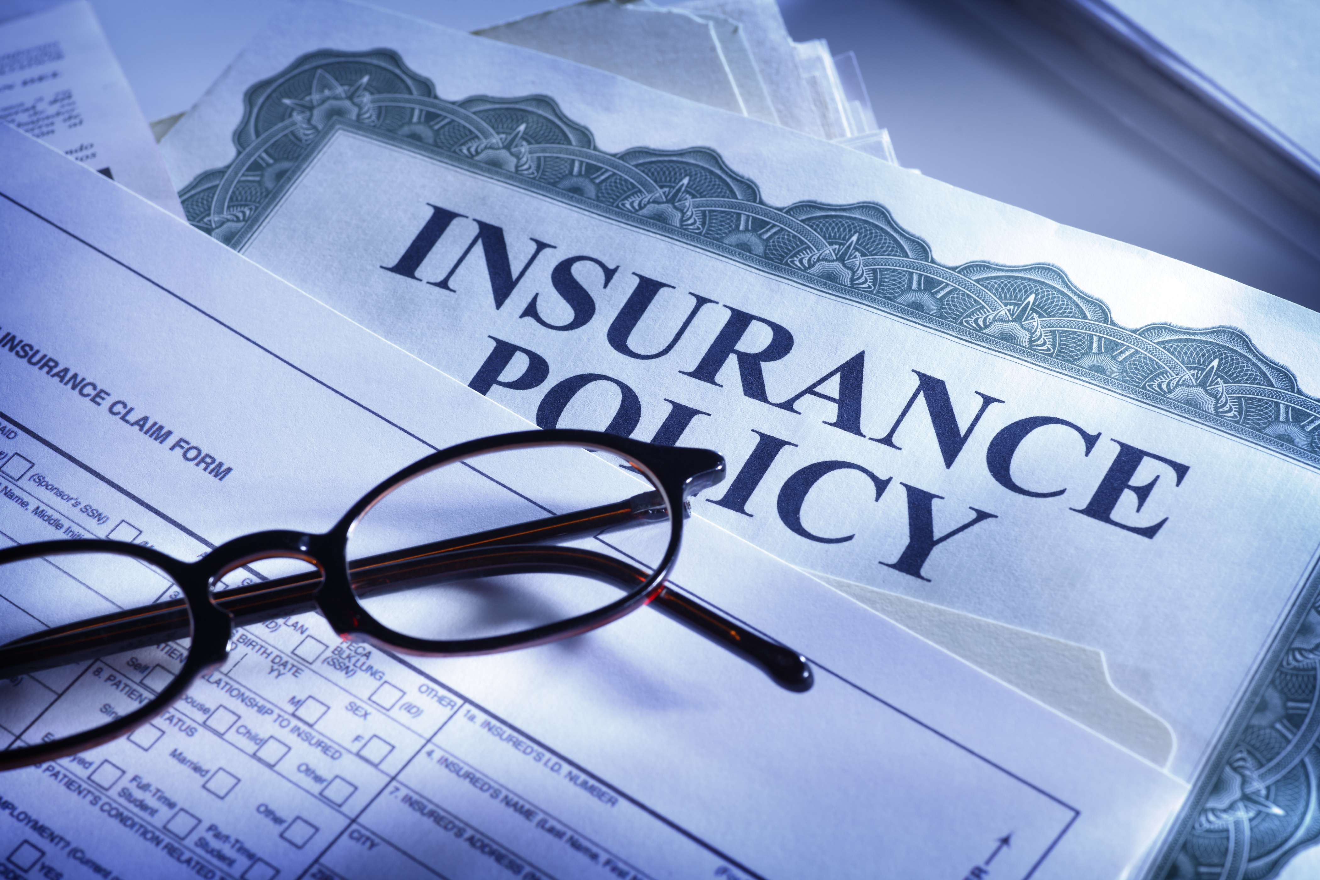 Art Insurance - A Necessity Of Today
