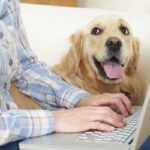 Pet Health Care Insurance